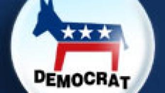 השתלטות הפלג הליברלי על המפלגה הדמוקרטית בארצות הברית